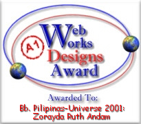 Web Works Designs Award